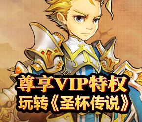 VIP说明